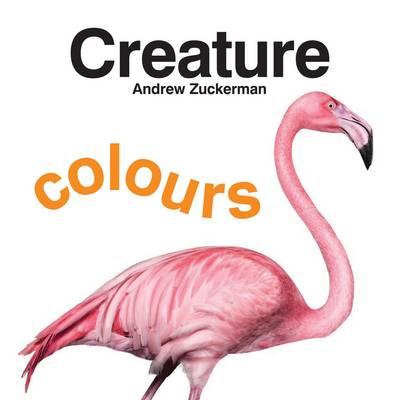 Creature Colours (Board book)