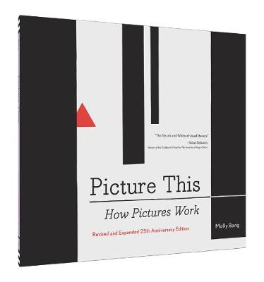 Picture This: How Pictures Work (Paperback)