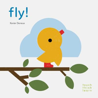 Fly! - TouchThinkLearn (Board book)