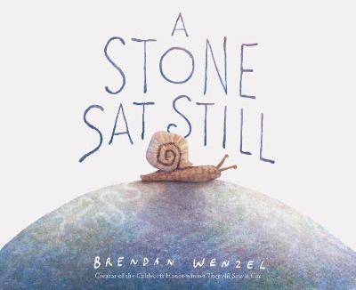 A Stone Sat Still (Hardback)