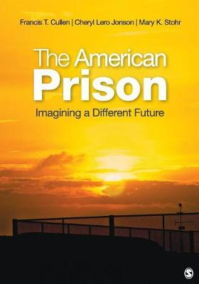 The American Prison: Imagining a Different Future (Paperback)