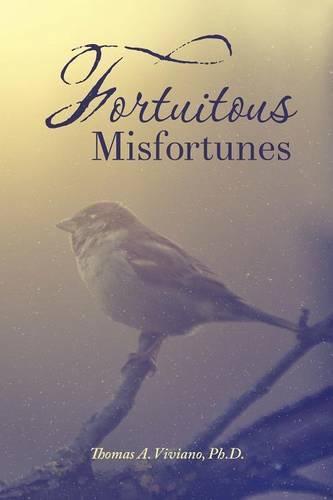 Fortuitous Misfortunes (Paperback)