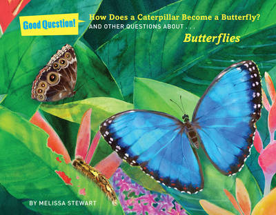 How Does a Caterpillar Become a Butterfly?: And Other Questions About Butterflies (Paperback)