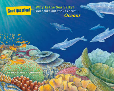 Why Is the Sea Salty?: And Other Questions About Oceans (Paperback)