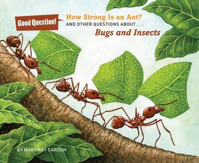 How Strong Is an Ant?: And Other Questions About Bugs and Insects (Paperback)