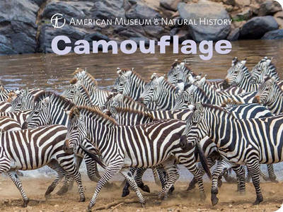 Camouflage (Board book)