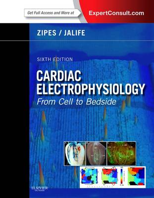 Cardiac Electrophysiology: From Cell to Bedside (Hardback)