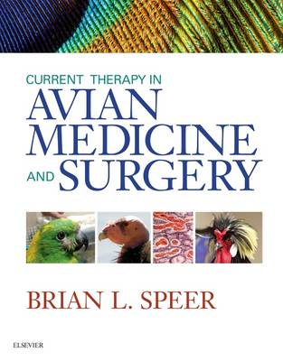 Current Therapy in Avian Medicine and Surgery (Hardback)