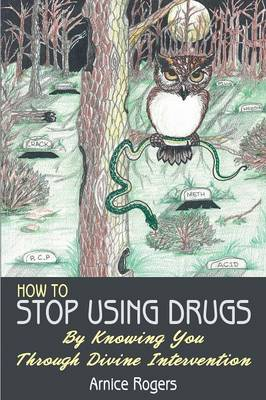 How to Stop Using Drugs: By Knowing You Through Divine Intervention (Paperback)