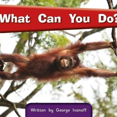 Springboard Connect 3a What Can You Do? (Paperback)
