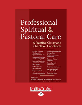 Professional Spiritual & Pastoral Care: A Practical Clergy and Chaplain's Handbook (Paperback)