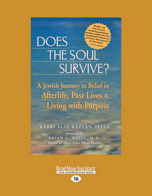 Does the Soul Survive?: A Jewish Journey to Belief in Afterlife, Past Lives & Living with Purpose (Paperback)
