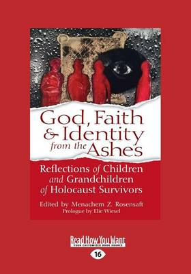 God, Faith & Identity from the Ashes: Reflections of Children and Grandchildren of Holocaust Survivors (Paperback)