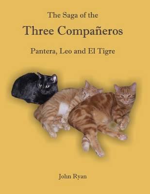The Saga of the Three Compa�eros: Pantera, Leo and El Tigre (Paperback)