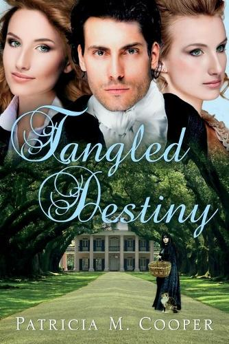 Tangled Destiny (Paperback)