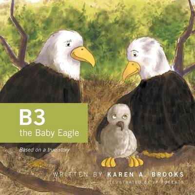 B3 the Baby Eagle: Based on a True Story (Paperback)