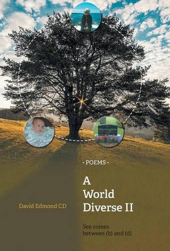 A World Diverse II: See Comes Between (B) and (D) (Hardback)