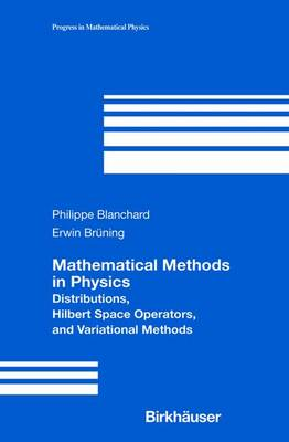 Mathematical Methods in Physics: Distributions, Hilbert Space Operators, and Variational Methods - Progress in Mathematical Physics 26 (Paperback)