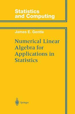 Numerical Linear Algebra for Applications in Statistics - Statistics and Computing (Paperback)