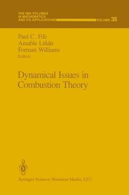 Dynamical Issues in Combustion Theory - The IMA Volumes in Mathematics and its Applications 35 (Paperback)