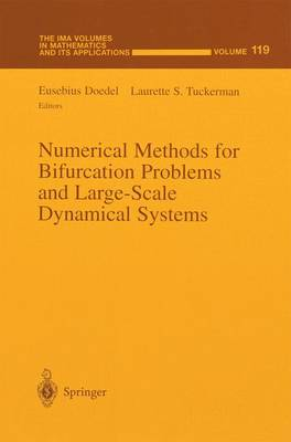 Numerical Methods for Bifurcation Problems and Large-Scale Dynamical Systems - The IMA Volumes in Mathematics and its Applications 119 (Paperback)