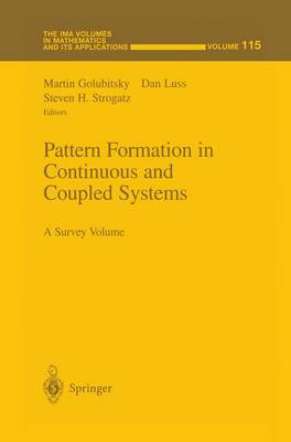 Pattern Formation in Continuous and Coupled Systems: A Survey Volume - The IMA Volumes in Mathematics and its Applications 115 (Paperback)