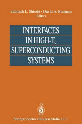 Interfaces in High-Tc Superconducting Systems (Paperback)