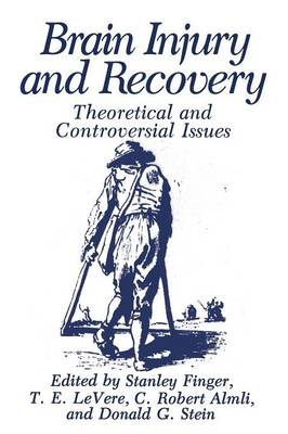 Brain Injury and Recovery: Theoretical and Controversial Issues (Paperback)