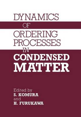 Dynamics of Ordering Processes in Condensed Matter (Paperback)