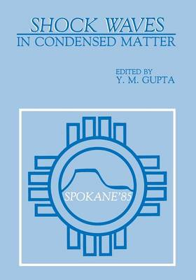 Shock Waves in Condensed Matter (Paperback)