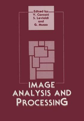 Image Analysis and Processing (Paperback)