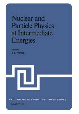 Nuclear and Particle Physics at Intermediate Energies - NATO Science Series B 15 (Paperback)