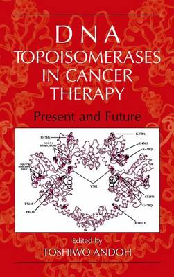 DNA Topoisomerases in Cancer Therapy: Present and Future (Paperback)