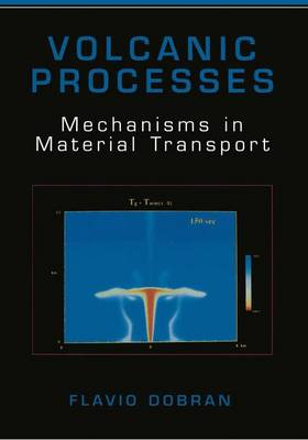 Volcanic Processes: Mechanisms in Material Transport (Paperback)