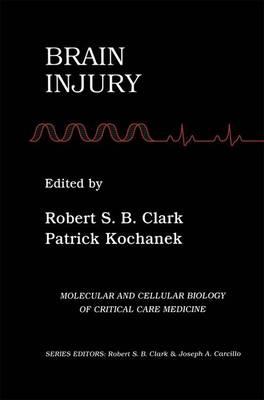 Brain Injury - Molecular & Cellular Biology of Critical Care Medicine 2 (Paperback)