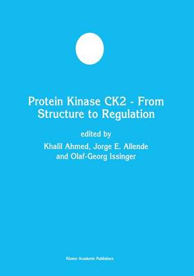 Protein Kinase CK2 - From Structure to Regulation - Developments in Molecular and Cellular Biochemistry 35 (Paperback)
