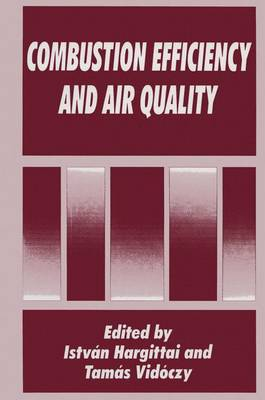 Combustion Efficiency and Air Quality (Paperback)