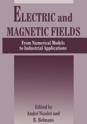 Electric and Magnetic Fields: From Numerical Models to Industrial Applications (Paperback)