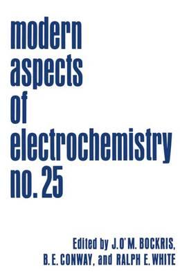 Modern Aspects of Electrochemistry - Modern Aspects of Electrochemistry 25 (Paperback)
