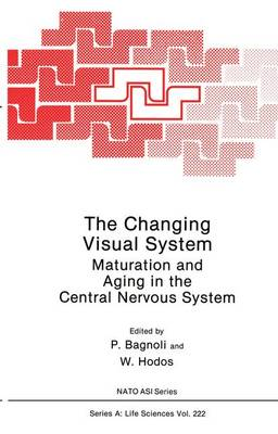 The Changing Visual System: Maturation and Aging in the Central Nervous System - NATO Science Series A 222 (Paperback)
