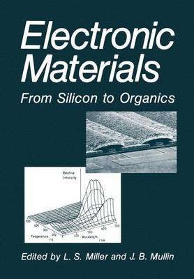 Electronic Materials: From Silicon to Organics (Paperback)