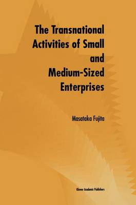 The Transnational Activities of Small and Medium-Sized Enterprises (Paperback)