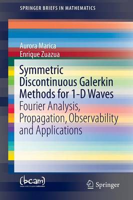 Symmetric Discontinuous Galerkin Methods for 1-D Waves: Fourier Analysis, Propagation, Observability and Applications - SpringerBriefs in Mathematics (Paperback)