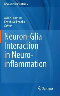 Neuron-Glia Interaction in Neuroinflammation - Advances in Neurobiology 7 (Hardback)