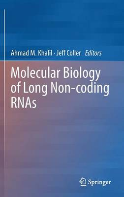 Molecular Biology of Long Non-coding RNAs (Hardback)