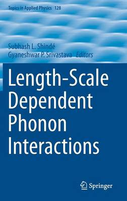 Length-Scale Dependent Phonon Interactions - Topics in Applied Physics 128 (Hardback)