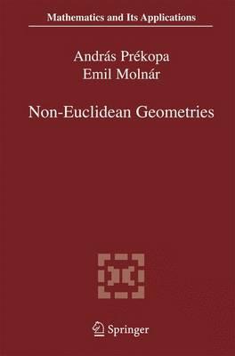 Non-Euclidean Geometries: Janos Bolyai Memorial Volume - Mathematics and Its Applications 581 (Paperback)