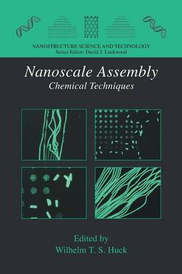 Nanoscale Assembly: Chemical Techniques - Nanostructure Science and Technology (Paperback)