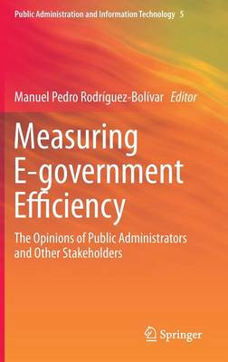 Measuring E-government Efficiency: The Opinions of Public Administrators and Other Stakeholders - Public Administration and Information Technology 5 (Hardback)
