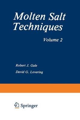 Molten Salt Techniques: Volume 2 (Paperback)